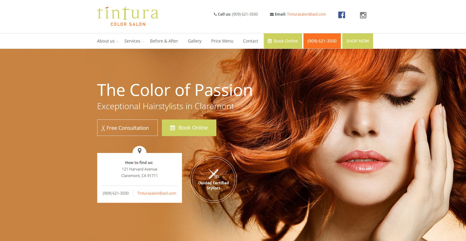 Tintura Salon Website
